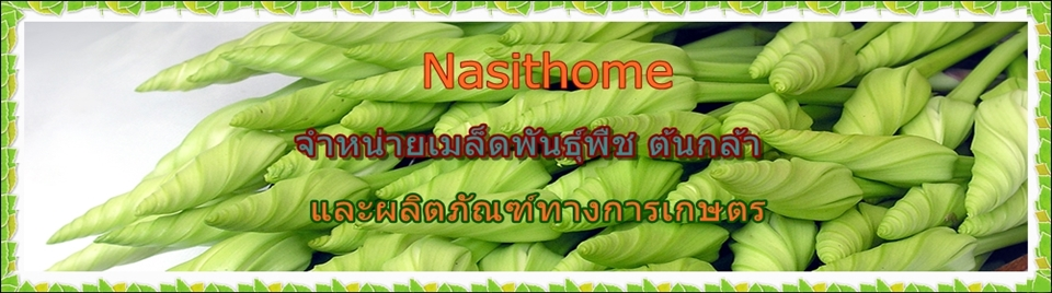 Nasithome