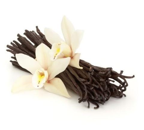 กลิ่น Vanilla floral