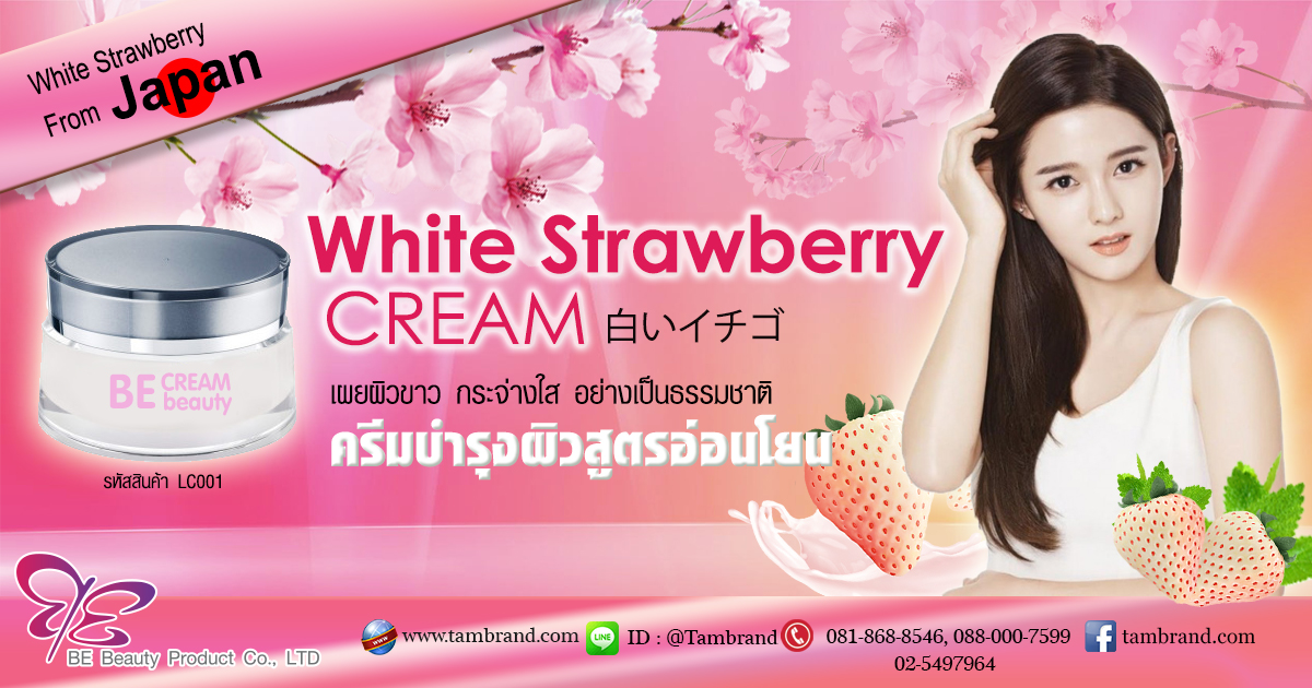 White Strawberry Cream : ไวท์สตอเบอร์รี่ครีม สำหรับทำแบรนด์และแบ่งบรรจุ