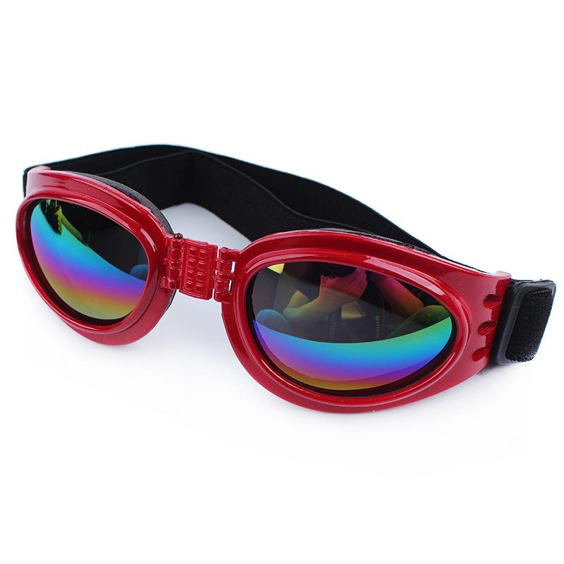 แว่นตาสุนัข สีแดง