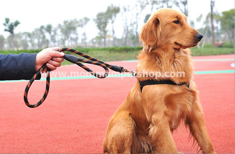 สายจูงสุนัขโต แบบรัดอก สีดำ