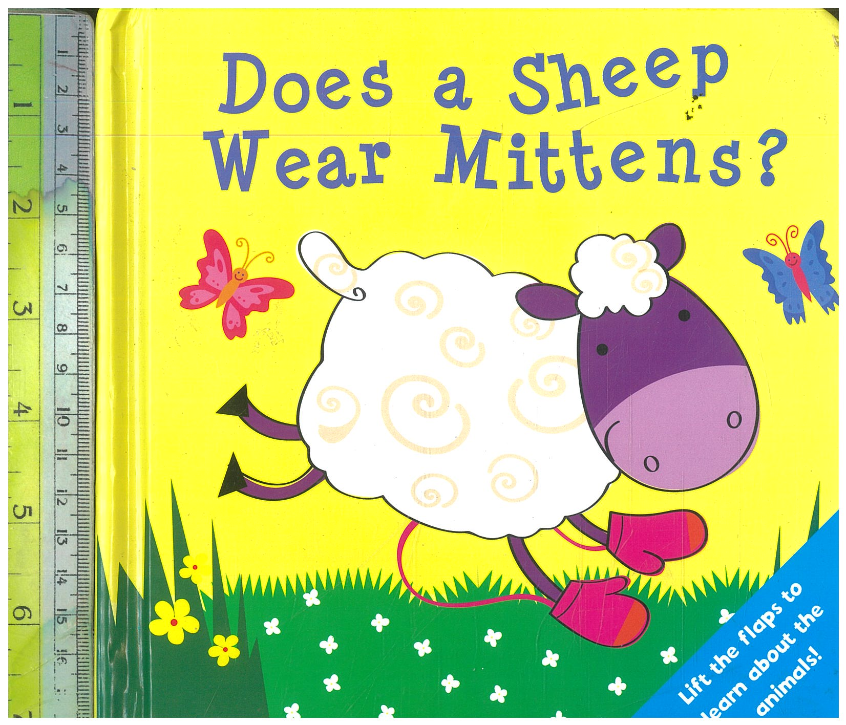 Does a Sheep wear Mittens