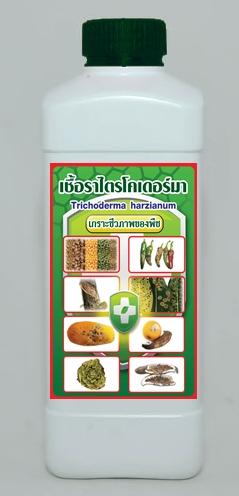 เชื้อราไตรโคเดอร์มา(ชนิดน้ำ)ชีวภัณฑ์ป้องกันโรคพืช