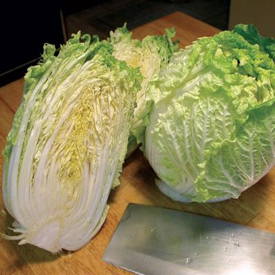 China Express Chinese Cabbage (ผักกาดขาวจีน)