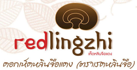 logo redlingzhi