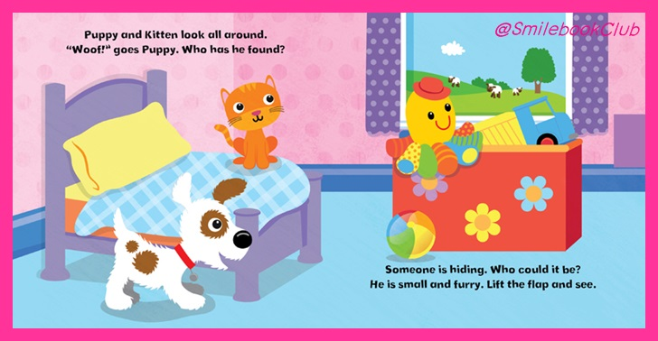Peekaboo Pals - Pets: Lift and Flap Book (Lift and Find)