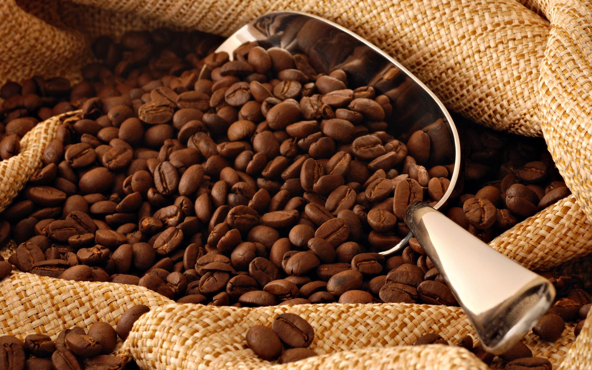 สารสกัด กาแฟ (Coffee Extract)