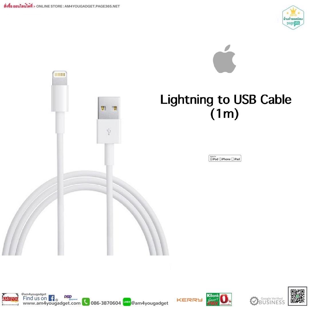 Apple Lightning to USB 1m Original100%