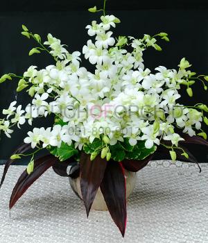 แจกันดอกไม้ White Winter B