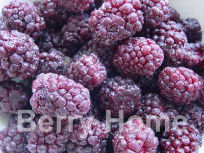 บอยเซนเบอร์รี่แช่แข็ง / Boysenberry 1 กก.