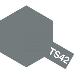 TS-42 light gun metal