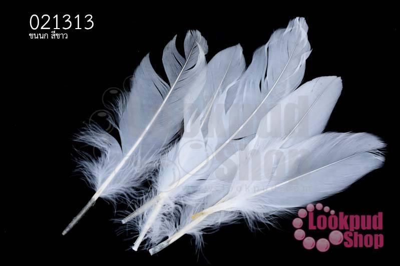 ขนนก สีขาว 5 ชิ้น