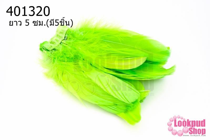 ขนนกมีริบบิ้น สีเขียวอ่อน ยาว 5 ซม.