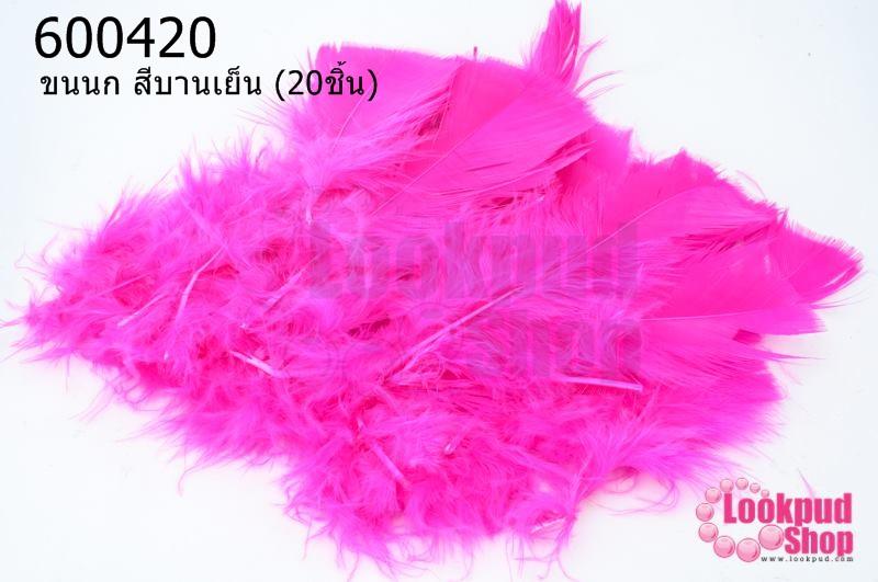 ขนนก สีบานเย็น (20ชิ้น)