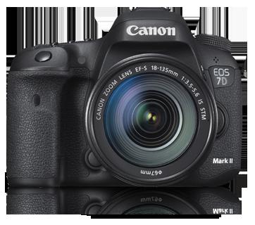Canon EOS 7D Mark II + 18-135 STM