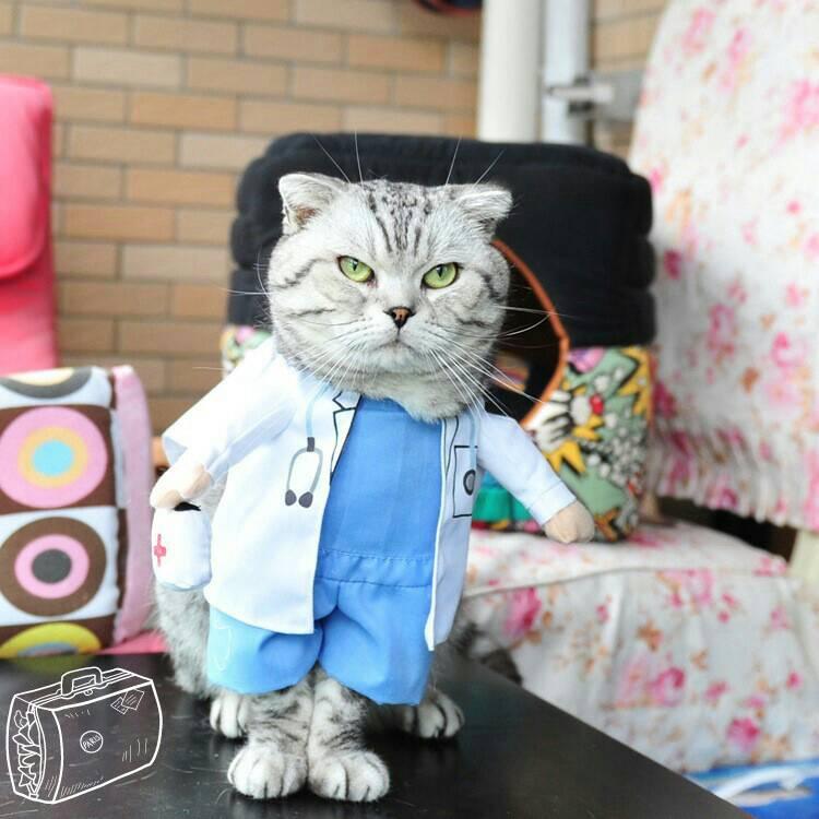 ชุดหมอ