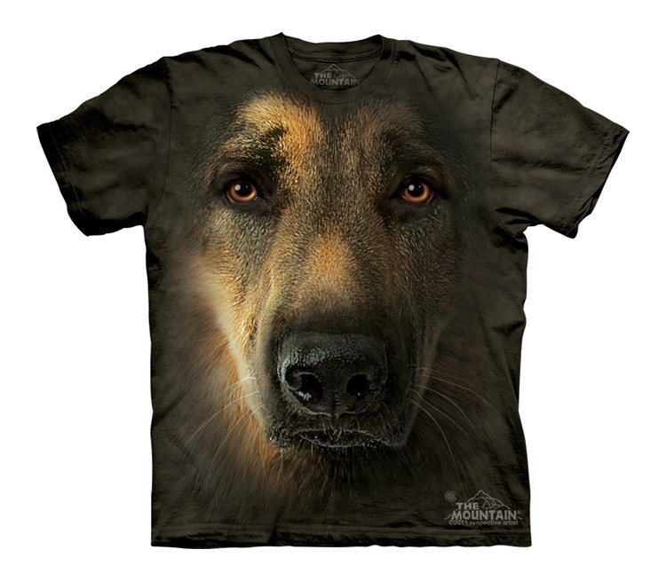 German Shepherd Portrait - Youth