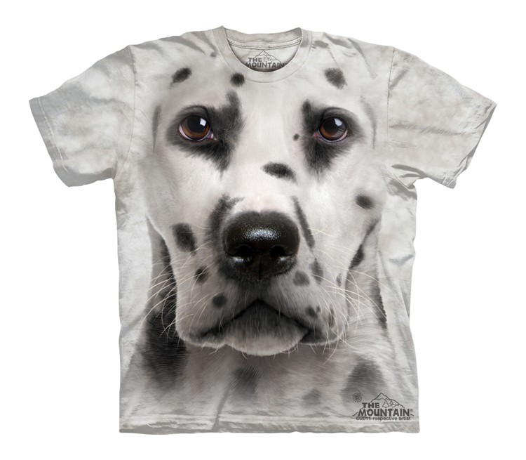 Dalmatian Face - Youth