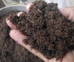 พีทมอส (Peat moss) 12ลิตร